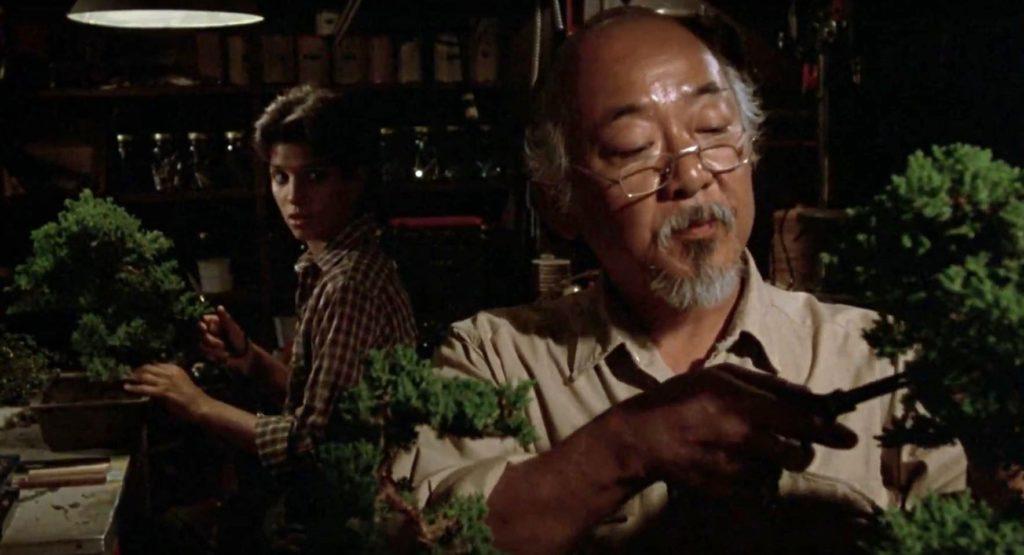 Karatê Kid - A Hora da Verdade (1984)